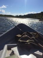 Gallatin гол, Монтана муж, АНУ (2016)